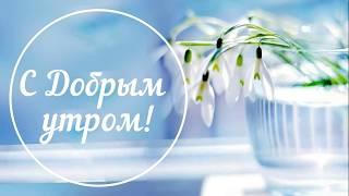 С Добрым утром! Доброго утра! Хорошего дня и настроения! Утро Пожелания  Настроение