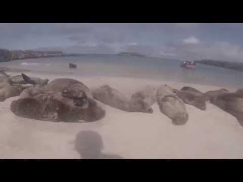 Galapagos Islands with G Adventures