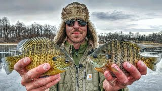 Early Ice Bluegill And Tip Down Bass