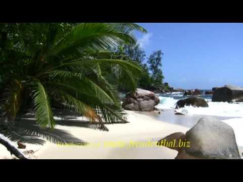 Curieuse, Ausflug ab Praslin   Seychellen