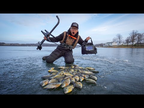 Early Ice Fishing With Garmin Panoptix! (THEY WERE STACKED)