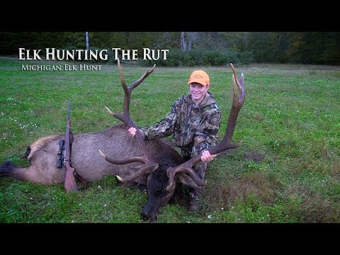 Elk Hunting The Rut 2018   MI