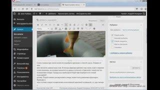видео WordPress плагины для организации меню