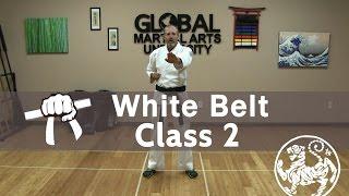 vuclip Shotokan Karate Follow Along Class - 9th Kyu White Belt - Class #2
