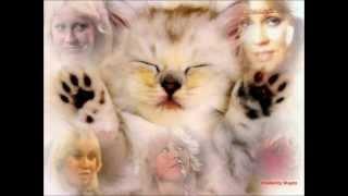Agnetha Fältskog - When You Really Loved Someone