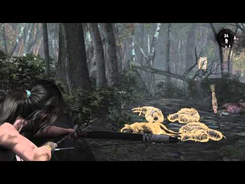 Tomb Raider: Definitive Edition Forest |