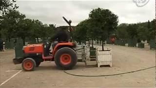 визит в версальский дворец видео
