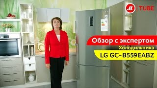 Видеообзор холодильника LG GC-B559EABZ с экспертом «М.Видео»(, 2017-03-29T11:28:30.000Z)
