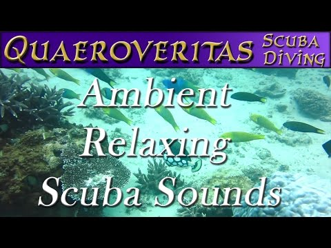 2 Hours Of Ambient Scuba Breathing - Ambient Sounds - Sounds To Help You Sleep