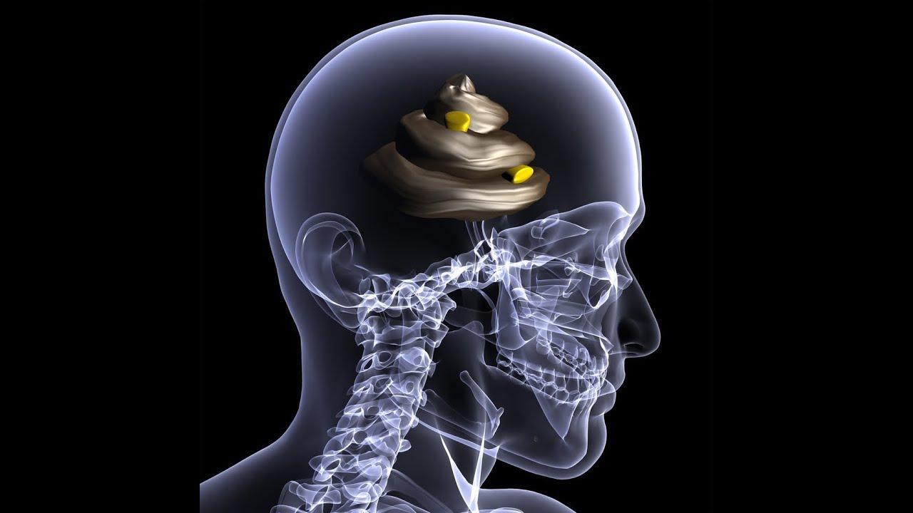 Resultado de imagen para TV is junk for your brain