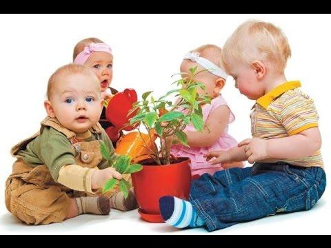 ТОП-10 лучших комнатных растений для ДЕТСКИХ КОМНАТ И ДЕТСКИХ САДОВ