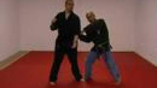 casa de kenpo green belt glancing wing