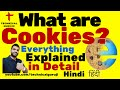 [Hindi] What are Cookies? Explained in Detail