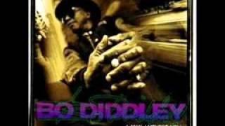 BO DIDDLEY - HEY BABY.wmv