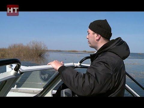 запрет ловли на спиннинг в новгородской области