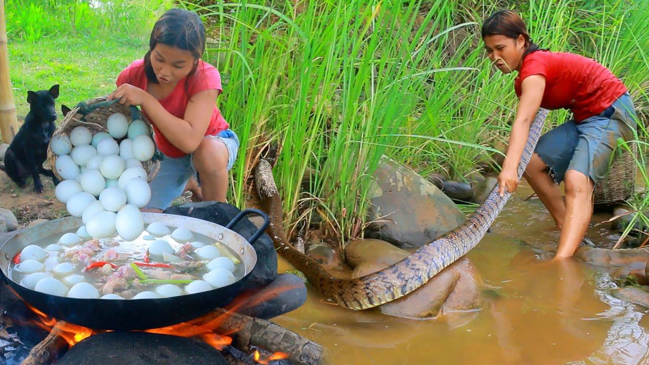 Women Fond Snake egg at River For Dog - Cooking Soup Snake egg for dog Eating delicious HD