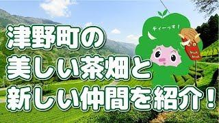 津野町の美しい茶畑と新しい仲間を紹介!