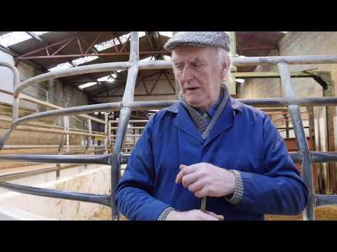 Save Leitrim - Gerry Dolan