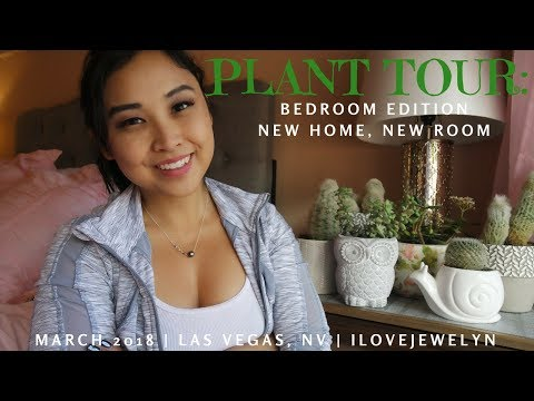 Plant tour: Las Vegas Bedroom edition. New Home, New Room | March 2018 | ILOVEJEWELYN