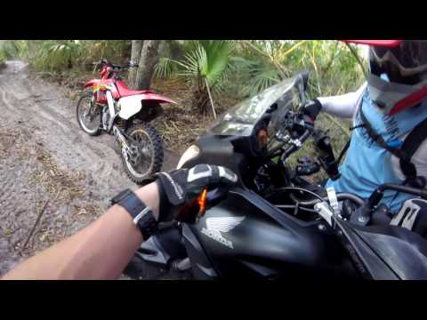 Trail Riding - Honda CB500X Rally Raid Level 2
