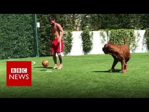 Messi has a kickabout with his dog - BBC News