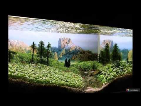 Оформление аквариума своими руками: 70 подводных чудес