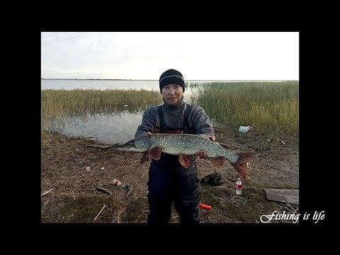 село в казахстане рыбалка