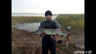 Рыбалка в Астане. Выезд на озера по Астаханской трассе 24.09.2017г.