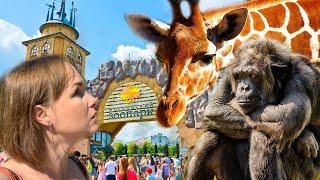 Куда сходить в Москве? Московский зоопарк. Лучший отдых с детьми НЕДОРОГО. Vlog