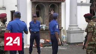 МИД: россияне не пострадали при взрывах на Шри-Ланке - Россия 24