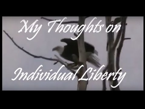 My Own Thoughts on INDIVIDUAL LIBERTY (& Styxhexenmammer666's Cone Theory)