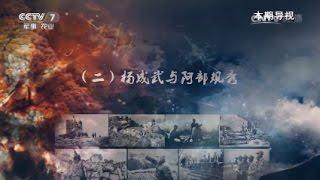 致命的对手(二)杨成武与阿部规秀  【讲武堂 20170408】