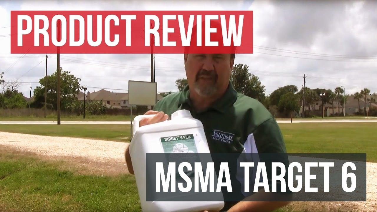 MSMA Target 6 Plus Herbicide