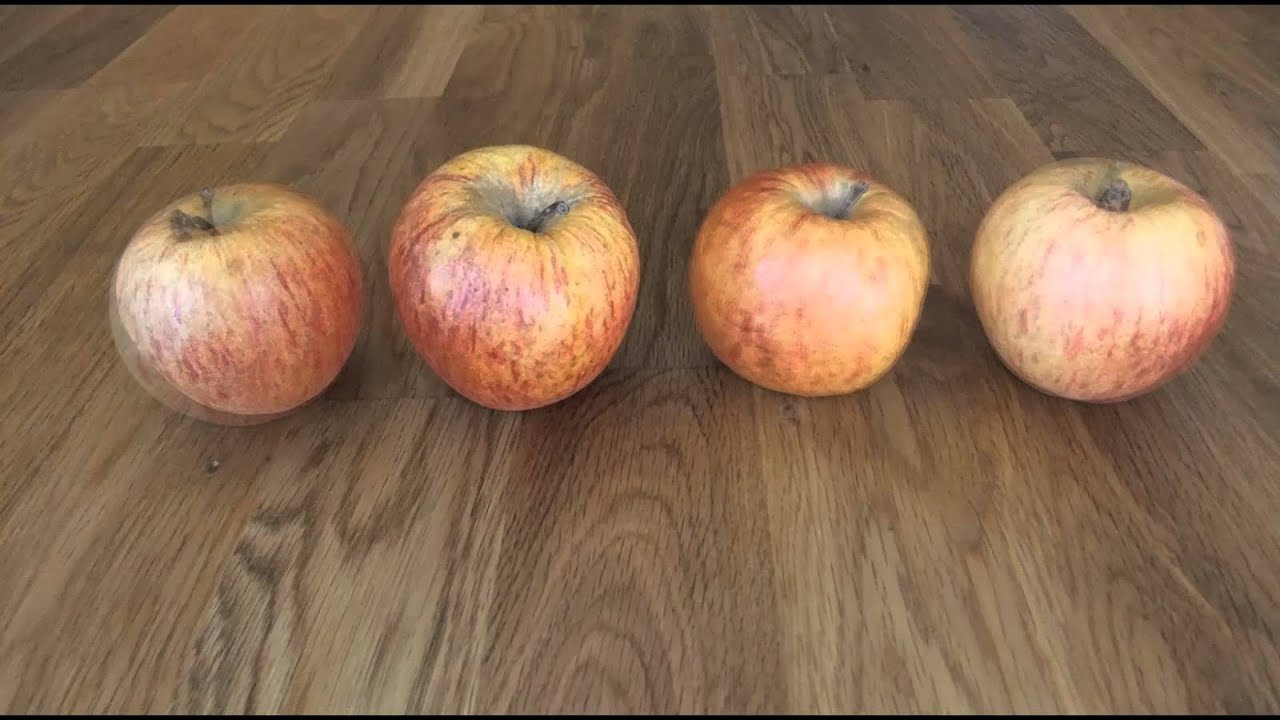 permutations on four apples youtube