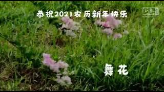 wangwee 发来的视频.