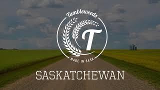 Tumbleweeds - Saskatchewan
