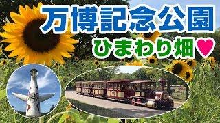 モノレールに乗って向日葵を見に行く♪【後編】