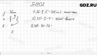 № 1202 - Математика 5 класс Мерзляк