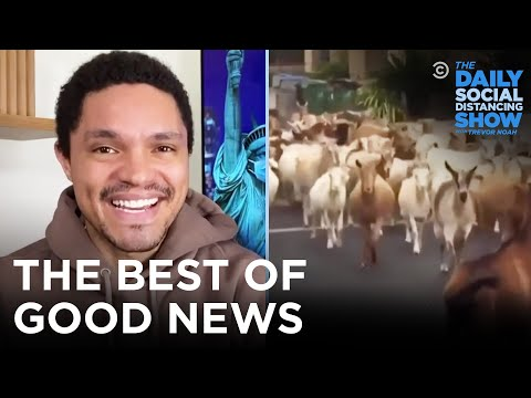 The Best of Good News | The Daily Social Distancing Show