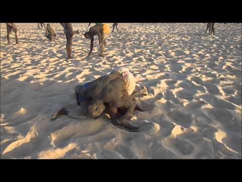 Laamb-Senegalese Wrestling -Training at Dakar, Senegal