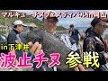 マルキューのチヌ釣り大会に参戦!#チヌフカセ釣り#波止釣り#フカセ釣り#下津井