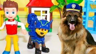 Щенячий патруль Новые серии Супергерои в реальной жизни Видео для детей Игрушки Щенячий патруль