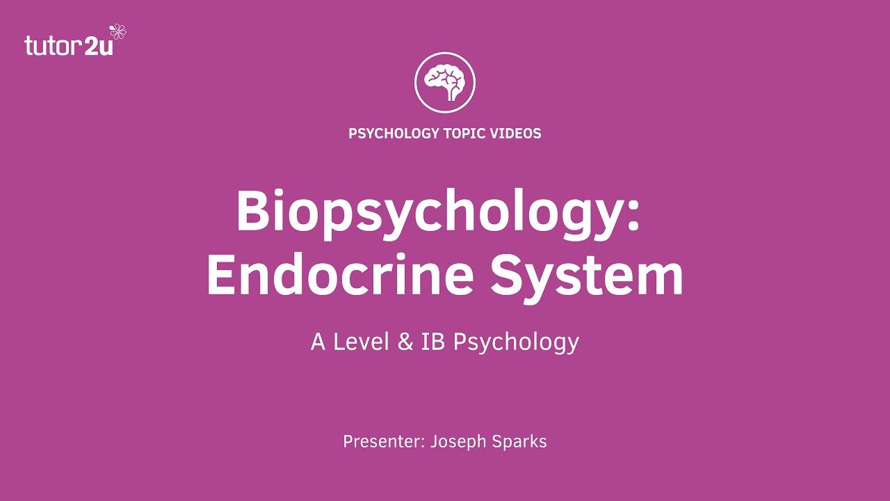 biopsychology revision