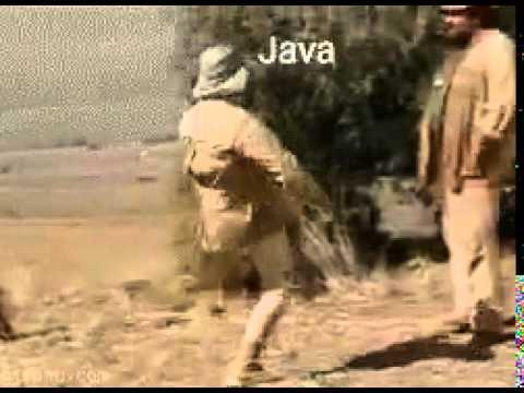 Java Vs C Youtube