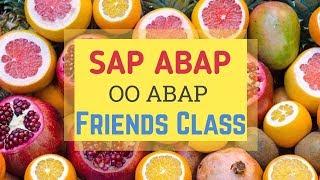 SAP ABAP : OO ABAP--Arkadaşlar Sınıf