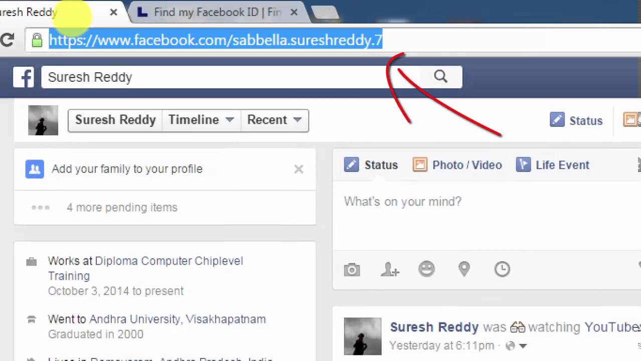 Facebook Profil Id