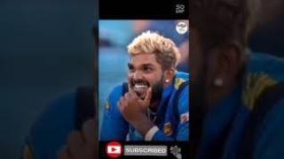 කොහොමද ගැම්ම 💪Srilanka Cricket Tik Tok|SL vs SA|Srilanka vs South Africa | #shorts
