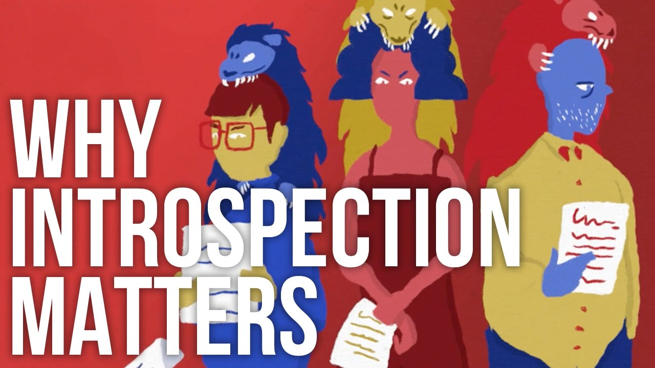 Why introspection matters youtube why introspection matters publicscrutiny Images