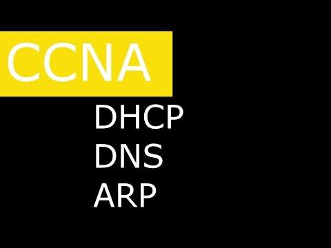 Вспомогательные протоколы DHCP, DNS, ARP