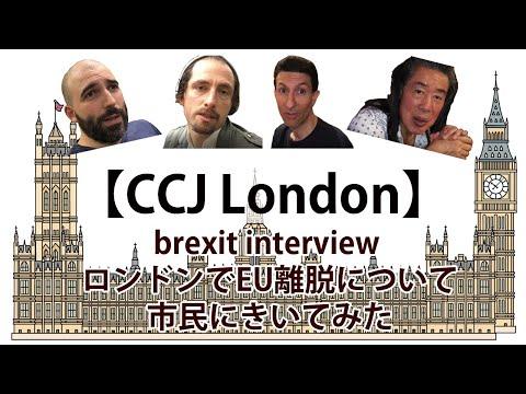 brexit interview ロンドンでEU離脱について市民にきいてみた